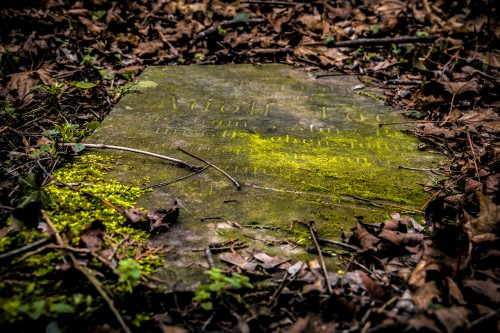 abandoned tombstone 1558671